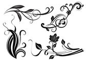 Black and white floral branches design elements. — Stock Vector