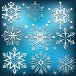Set of vector snowflakes. — 图库矢量图片