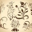 Floral vintage vector design elements isolated on yellow backgro — Stock Vector #19769329