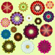 Abstract flower vector set isolated on yellow background. — Stock Vector