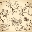 elementos del diseño floral vector vendimia aislados en color beige backgrou — Vector de stock