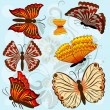 Set of autumn colored vector butterflies isolated on blue backgr — Stockvectorbeeld