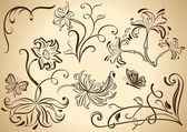 Floral vintage vector design elements isolated on beige backgrou — Stock Vector
