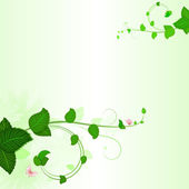 Green branches with leaves spring background — ストックベクタ