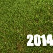 New 2014 year white 3D figres in green grass. — Stock Photo