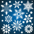 Set of vector snowflakes isolated on blue background. — Stock Vector #35956217