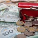 Polish money — Stock Photo #12701442