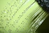 Water — Foto de Stock