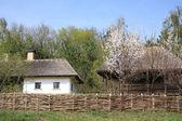 украина, сельской местности — Стоковое фото