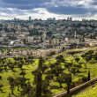 Israel, mount olives - Stock Photo