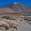 Royalty-Free Stock Photo: Teide national park
