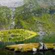 Glacial lake in Fagaras — Stock Photo