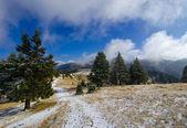Ciucas montaña — Foto de Stock