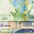 Leu bank note — Stock Photo