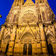 Night-view of St. Vitus Cathedral in Prague (Czech Republic) — Stock Photo