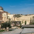 Archaeological park near the walls of Jerusalem, Israel with Al Aqsa Mosque and the jeus graveyard in the backfround — Stock Photo
