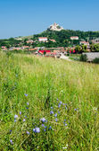 Rural landscape in Transylvania, Rupea — Stock Photo