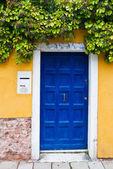 Colorful Venetian house entrance door — Stock Photo