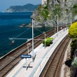 Manarola village and train station — Stock Photo #31732351