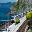 Manarola village and train station — Stock Photo
