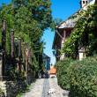 Cobbed street in Sighisoara, Romania — Stock Photo