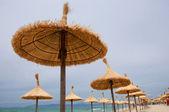 Holiday in Palma de Mallorca, Spain — Stock Photo