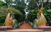 Dragons Stairs to Wat Phrathat Doi Suthep — Stock Photo