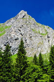 Retezat mountain, Romania — Stock Photo