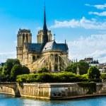 Постер, плакат: Notre Dame de Paris cathedral