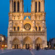 Постер, плакат: Notre Dame de Paris cathedral night view