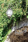 Ivy on the wall and lamp and cafe sign — Stock Photo
