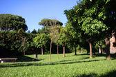 Aventine Tepesi, Roma park — Stok fotoğraf