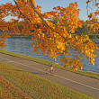 Stock Photo: Bike path on riverside in autumn