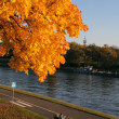 Stock Photo: Autumn riverside