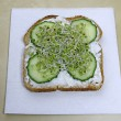 Diet sandwich with sprouts — Stock Photo