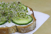 Closeup of green, fresh sandwich with sprouts — Stock Photo