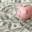 Pig bank on one hundred dollar bills — Stock Photo