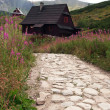 Stock Photo: Mountain hut and path in Tatra, Poland
