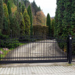 Black wrought gate to property with garden in the background — Stock Photo