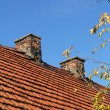 Red tile roof and two chimneys — Stock Photo #33918763
