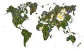 Wereldkaart met korenbloem weide achtergrond — Stok fotoğraf
