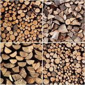 Set of different wood logs background — Stock Photo
