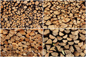 Collection of wood logs — Stock Photo