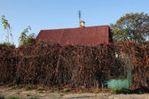 Overgrown old property in autumn — Stock Photo