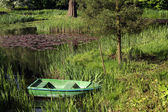 Scenic landscape- pond and boat — Stock Photo