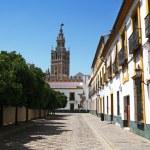 View of Giralda from the Plaza Patio de Banderas, Seville, Spain — Stock Photo #48943487