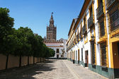 View of Giralda from the Plaza Patio de Banderas, Seville, Spain — Stock Photo