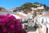 FRIGILIANA, MAY 12 panoramic view of Frigiliana on May 12, 2014 Frigiliana, Spain. It is one of beautiful white towns in Andalusia, Spain. — Stock Photo
