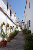 Beautiful spanish street in typical white town in Andalusia — Stock Photo