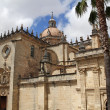 The Cathedral of San Salvador in Jerez de la Frontera, Spain — Stock Photo #50949497